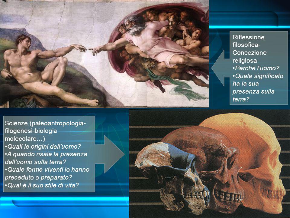 Riflessione filosofica- Concezione religiosa
