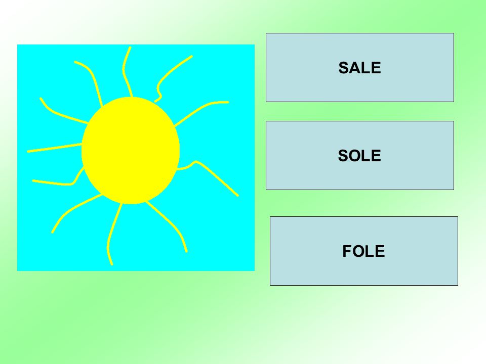 SALE SOLE FOLE