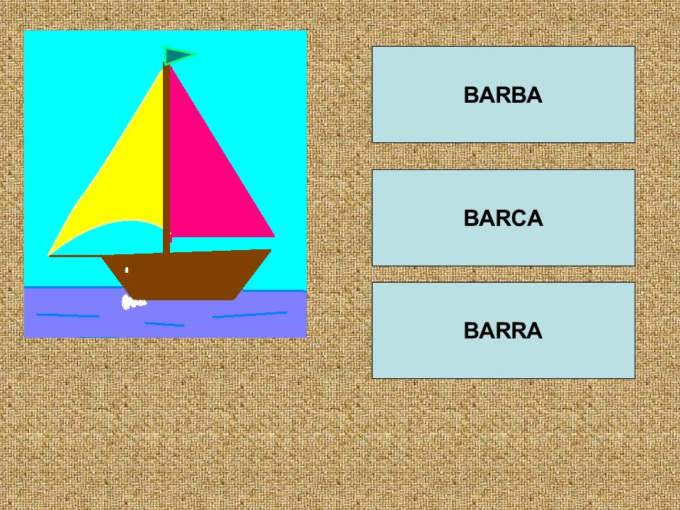 BARBA BARCA BARRA