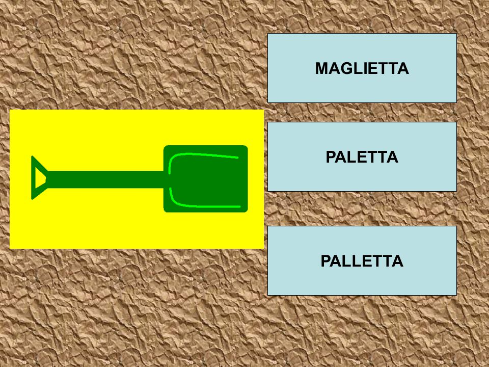 MAGLIETTA PALETTA PALLETTA