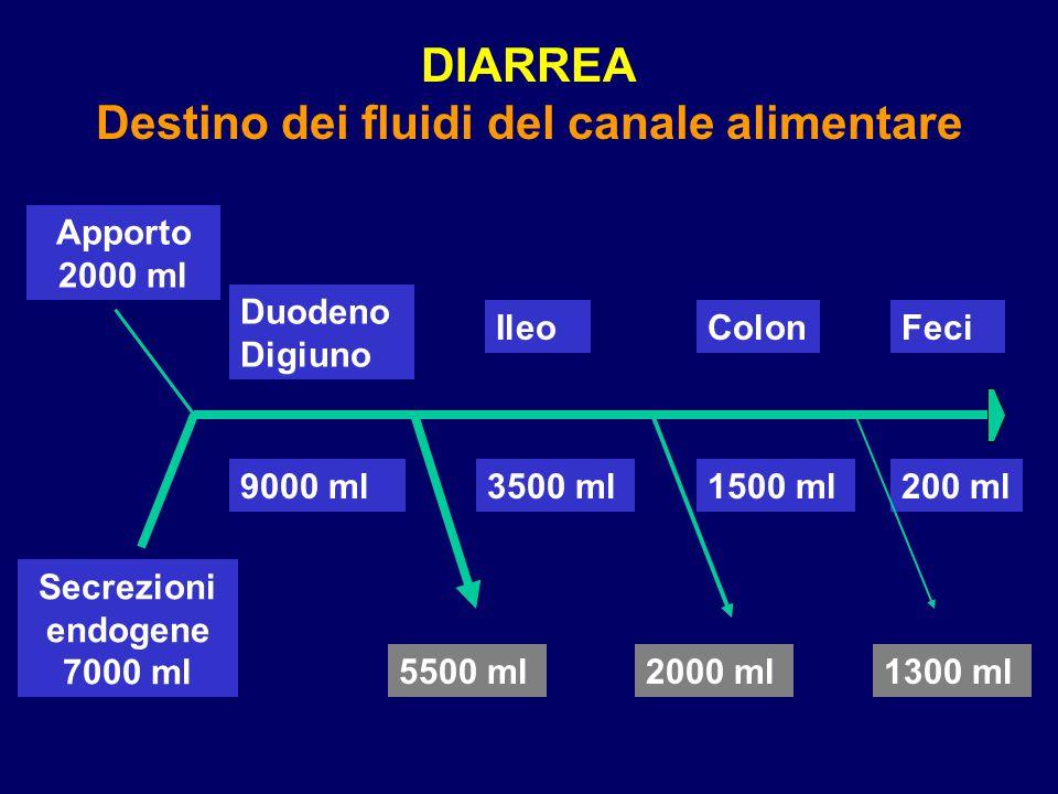 DIARREA Destino dei fluidi del canale alimentare