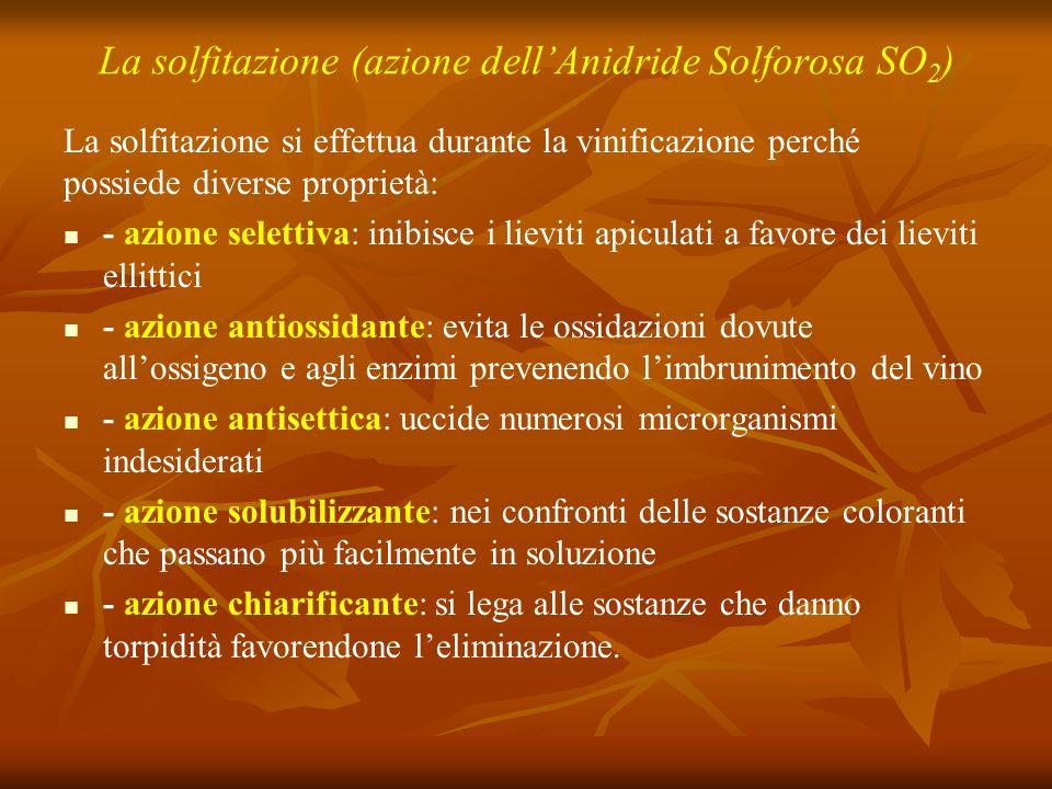 La solfitazione (azione dell'Anidride Solforosa SO2)
