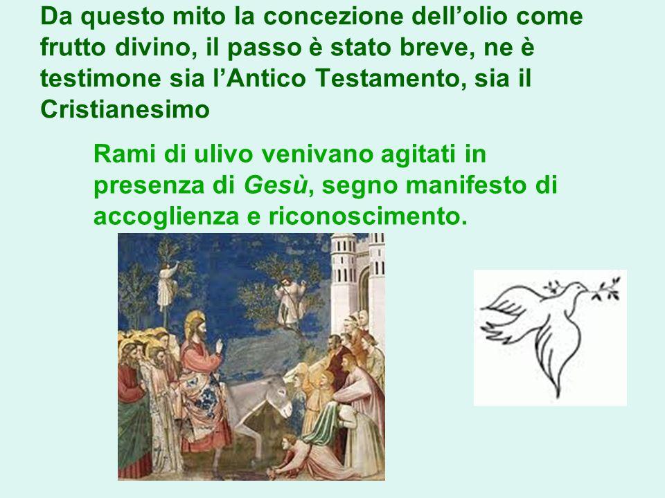 Da questo mito la concezione dell'olio come frutto divino, il passo è stato breve, ne è testimone sia l'Antico Testamento, sia il Cristianesimo