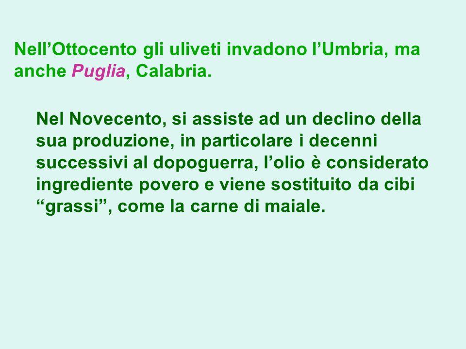 Nell'Ottocento gli uliveti invadono l'Umbria, ma anche Puglia, Calabria.