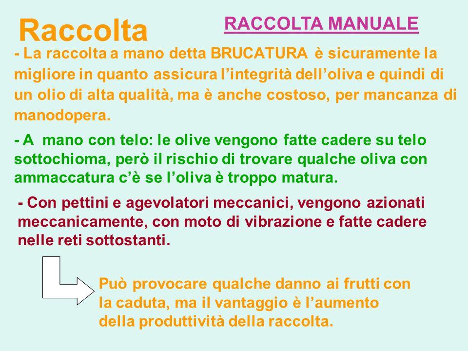 Raccolta RACCOLTA MANUALE