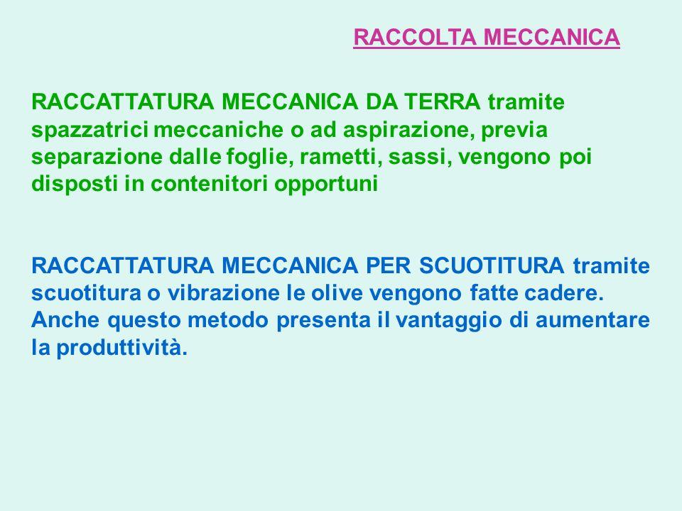 RACCOLTA MECCANICA