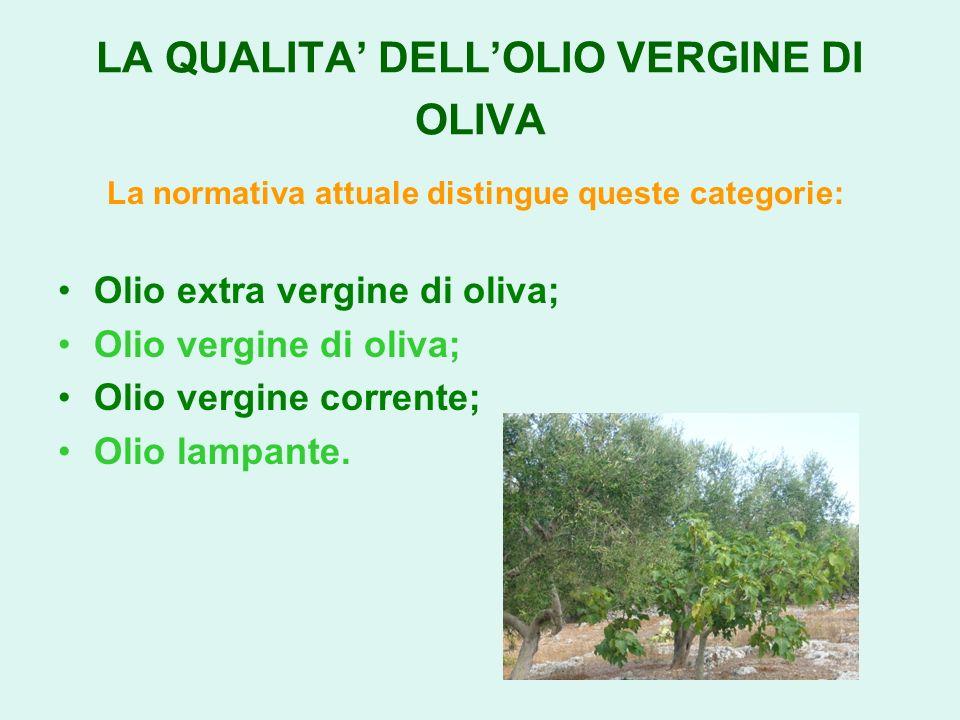 LA QUALITA' DELL'OLIO VERGINE DI OLIVA