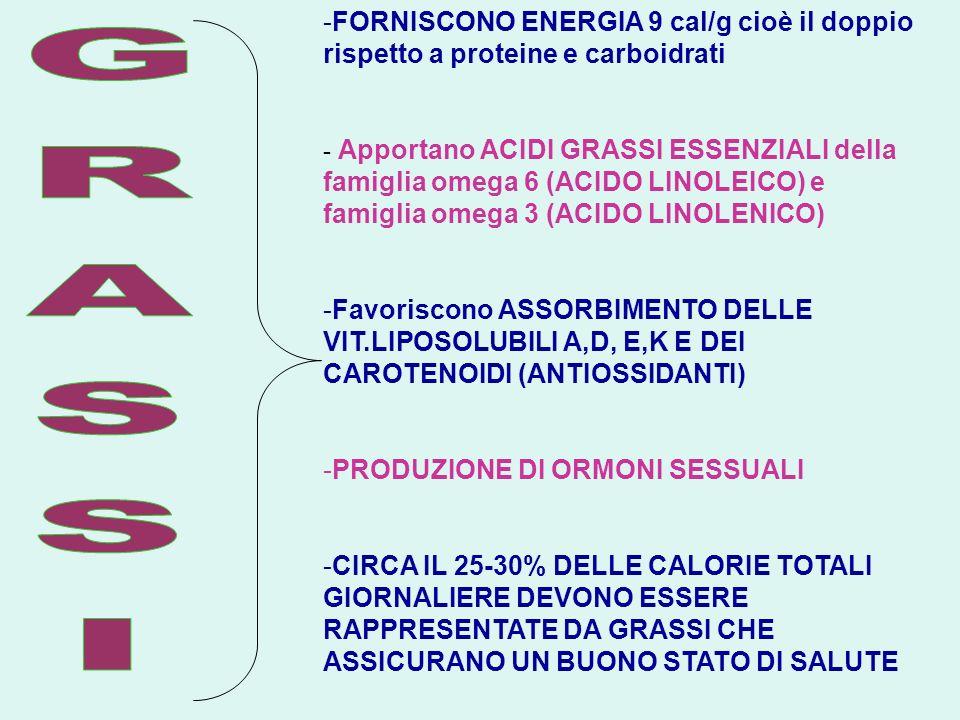FORNISCONO ENERGIA 9 cal/g cioè il doppio rispetto a proteine e carboidrati