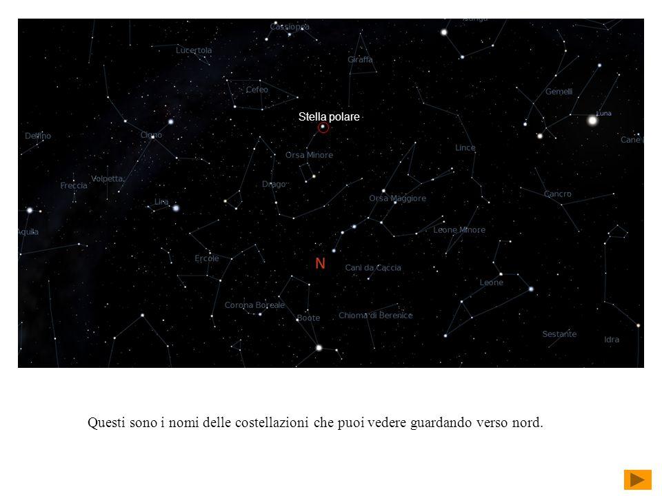 Stella polare Questi sono i nomi delle costellazioni che puoi vedere guardando verso nord.