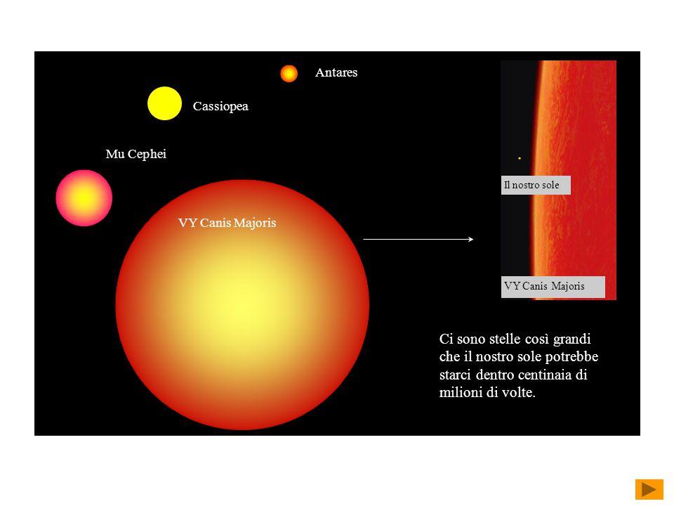 Mu Cephei Antares. Cassiopea. VY Canis Majoris. Il nostro sole.