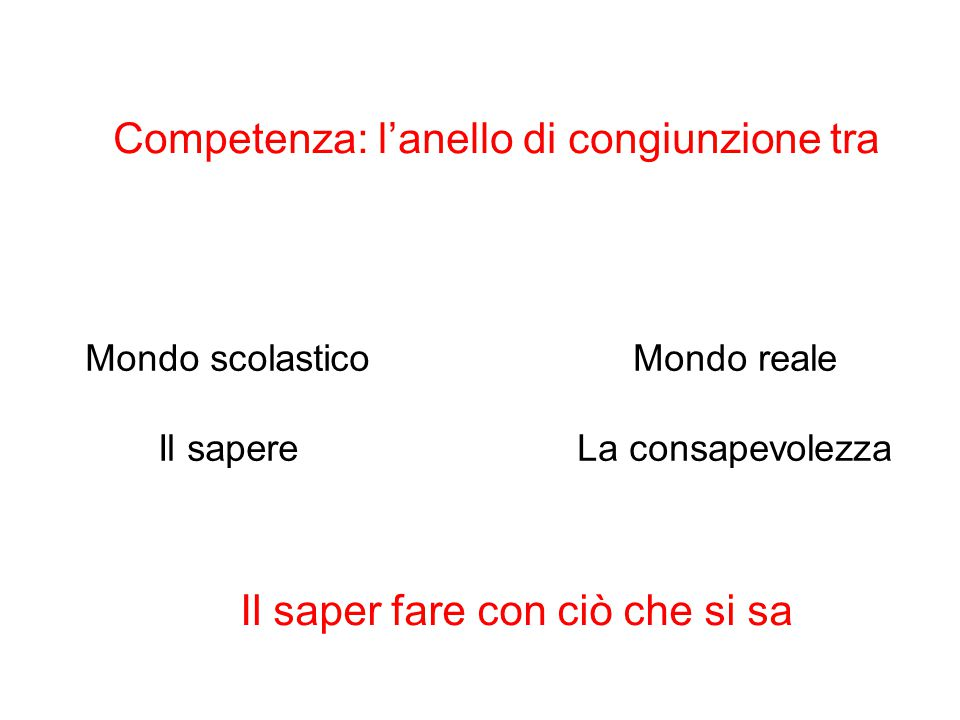 Competenza: l'anello di congiunzione tra