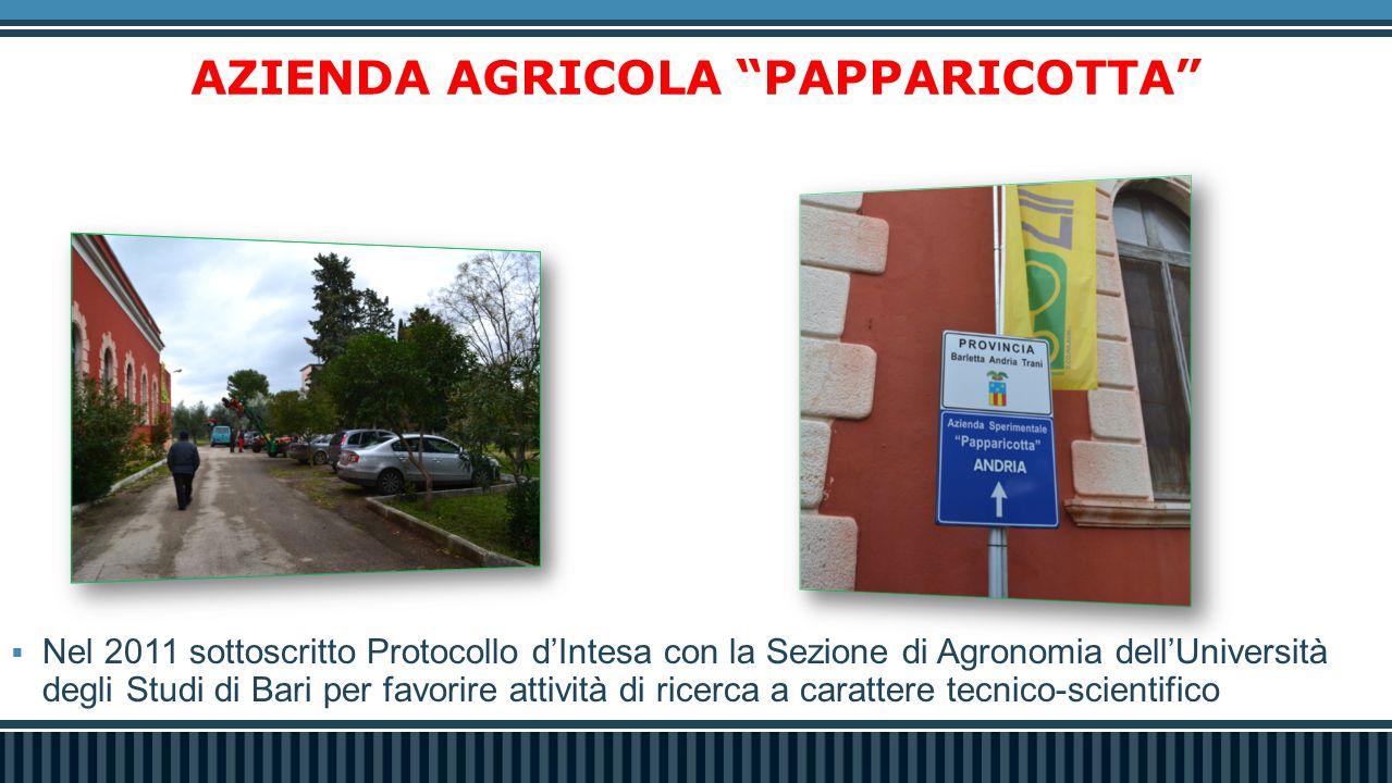 AZIENDA AGRICOLA PAPPARICOTTA