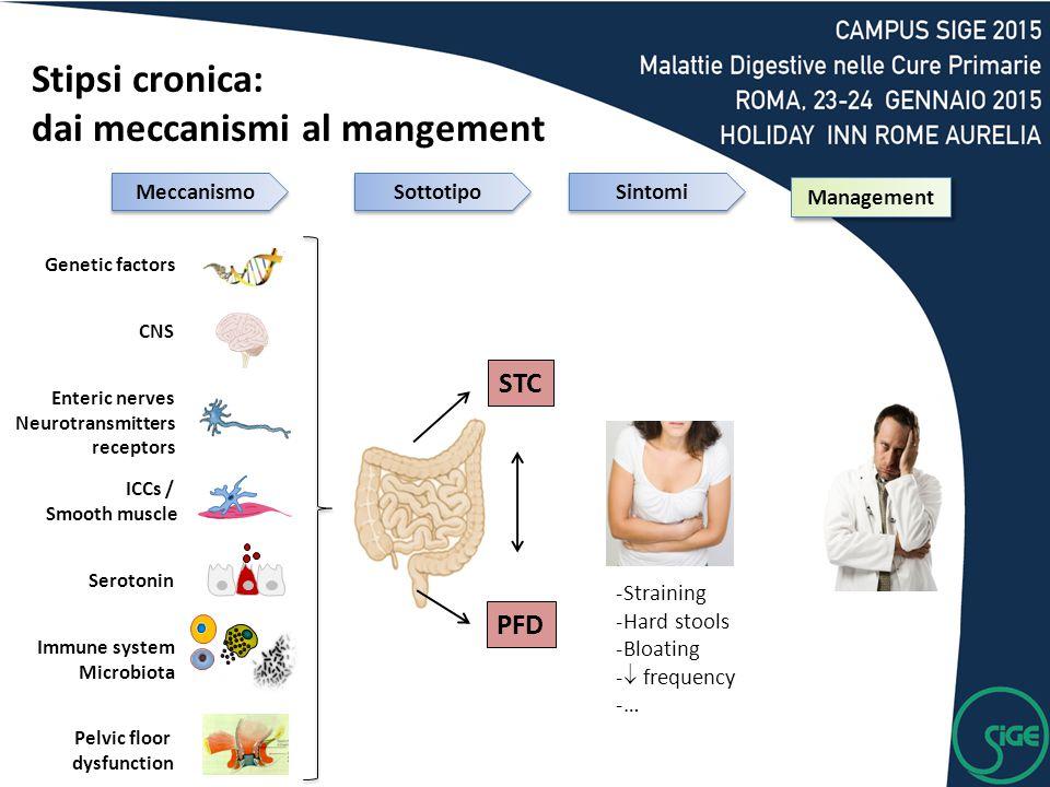 Stipsi cronica: dai meccanismi al mangement