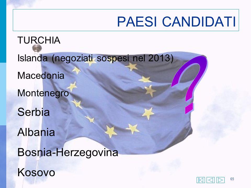 PAESI CANDIDATI Serbia Albania Bosnia-Herzegovina Kosovo TURCHIA