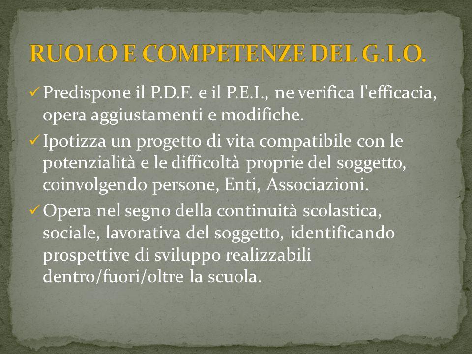 RUOLO E COMPETENZE DEL G.I.O.