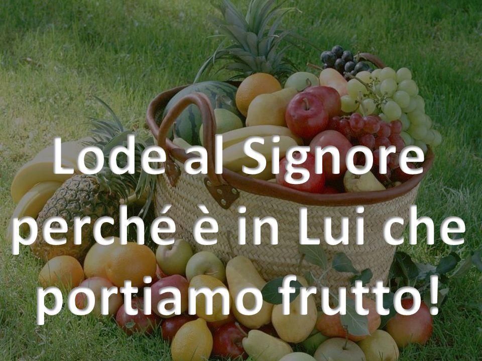 Lode al Signore perché è in Lui che portiamo frutto!