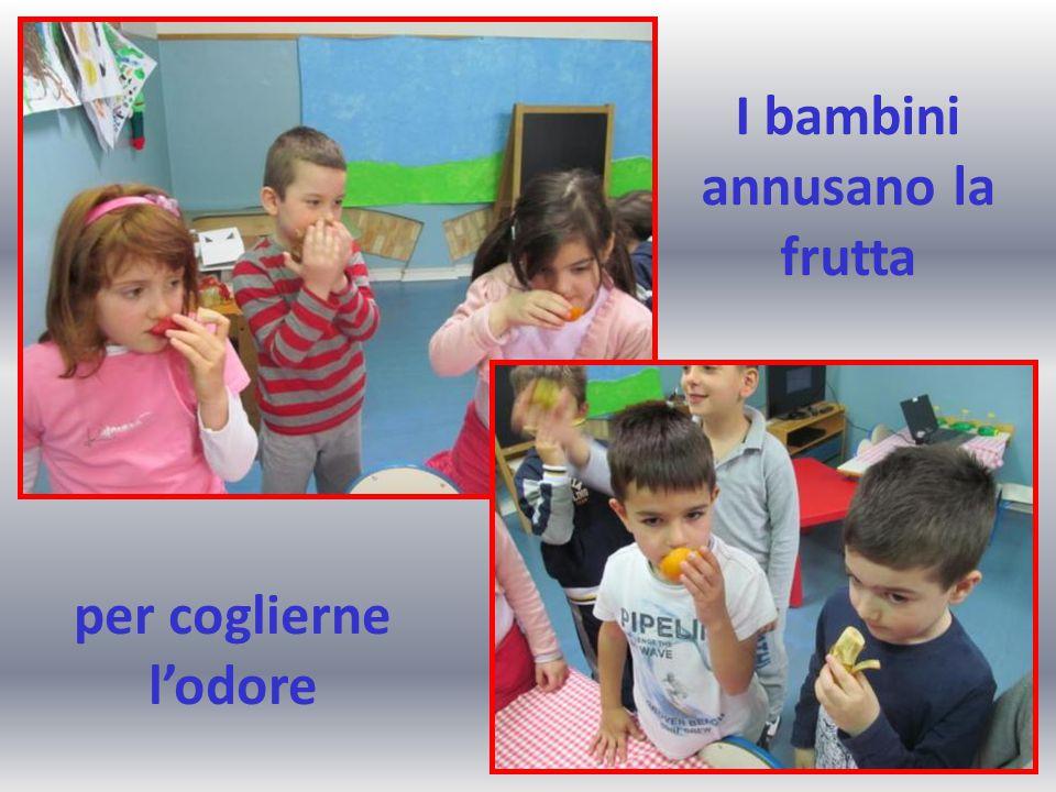 I bambini annusano la frutta