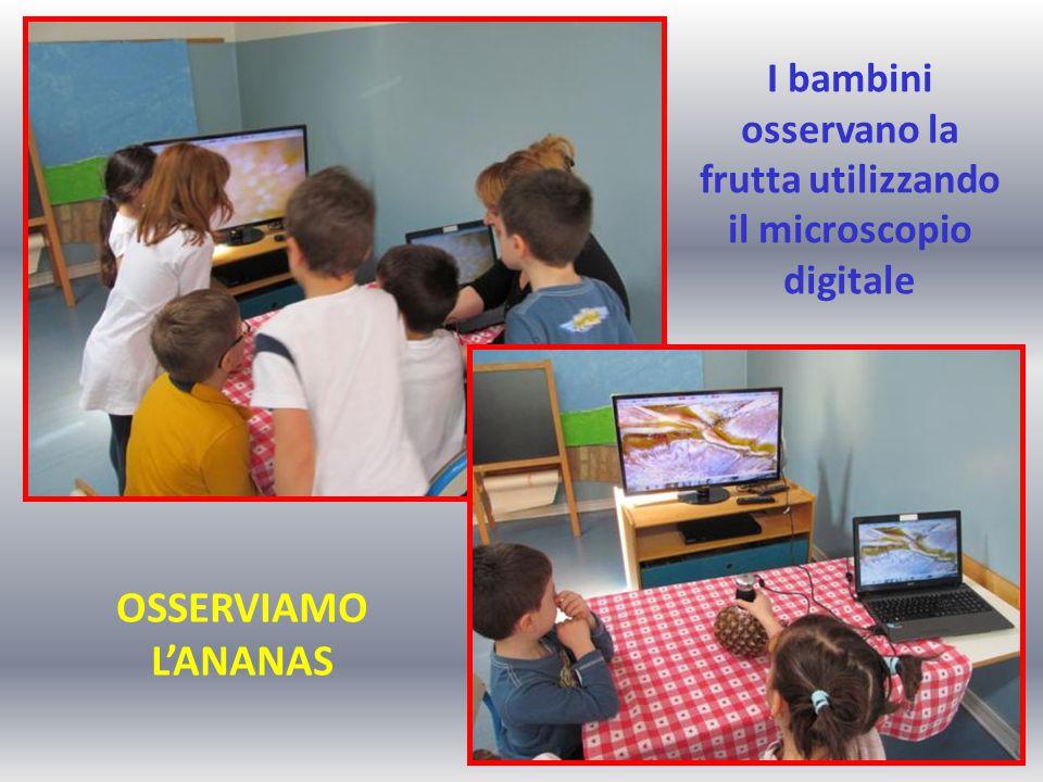 I bambini osservano la frutta utilizzando il microscopio digitale