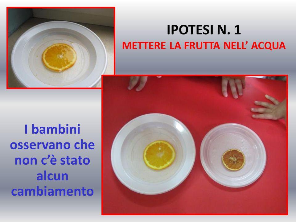 IPOTESI N. 1 METTERE LA FRUTTA NELL' ACQUA