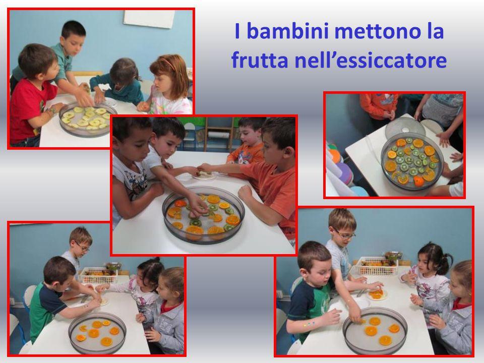 I bambini mettono la frutta nell'essiccatore