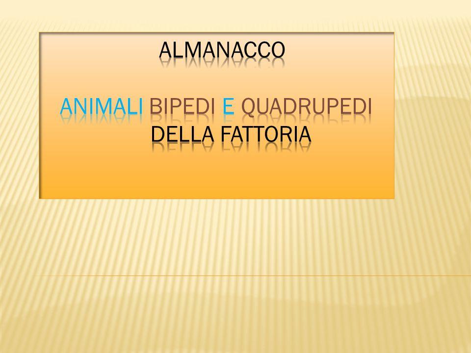 ALMANACCO animali BIPEDI e QUADRUPEDI DELLA FATTORIA
