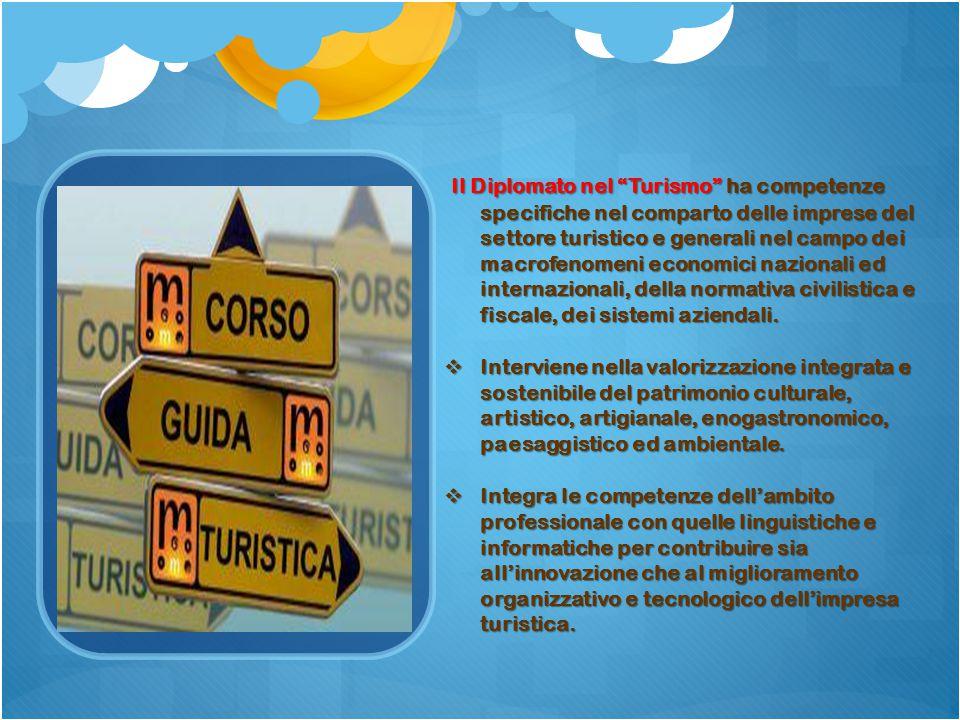 Il Diplomato nel Turismo ha competenze specifiche nel comparto delle imprese del settore turistico e generali nel campo dei macrofenomeni economici nazionali ed internazionali, della normativa civilistica e fiscale, dei sistemi aziendali.