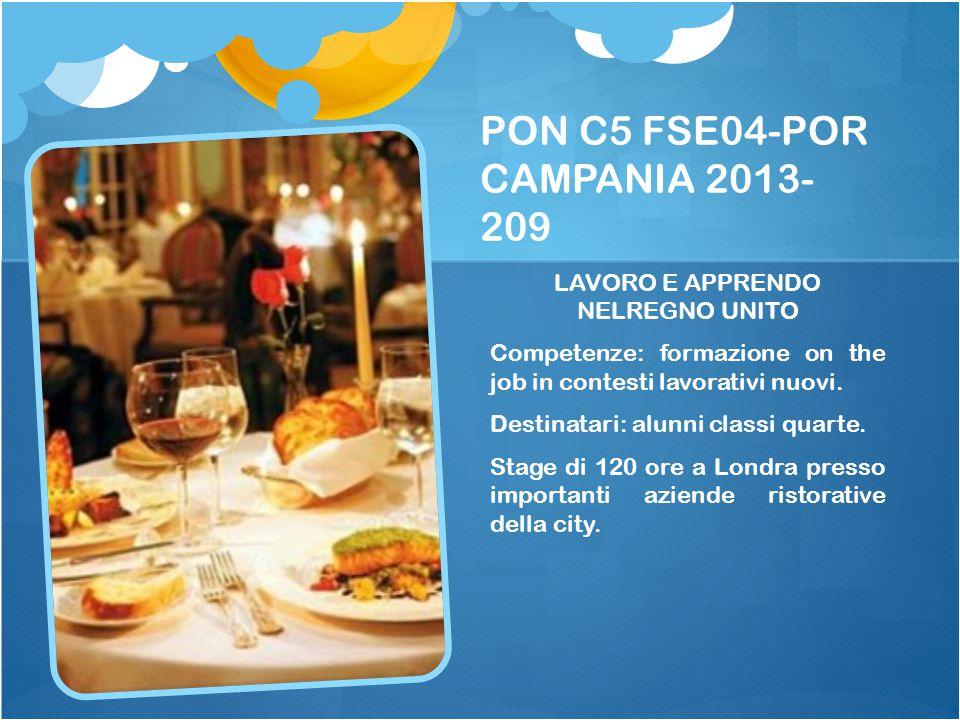 PON C5 FSE04-POR CAMPANIA 2013-209