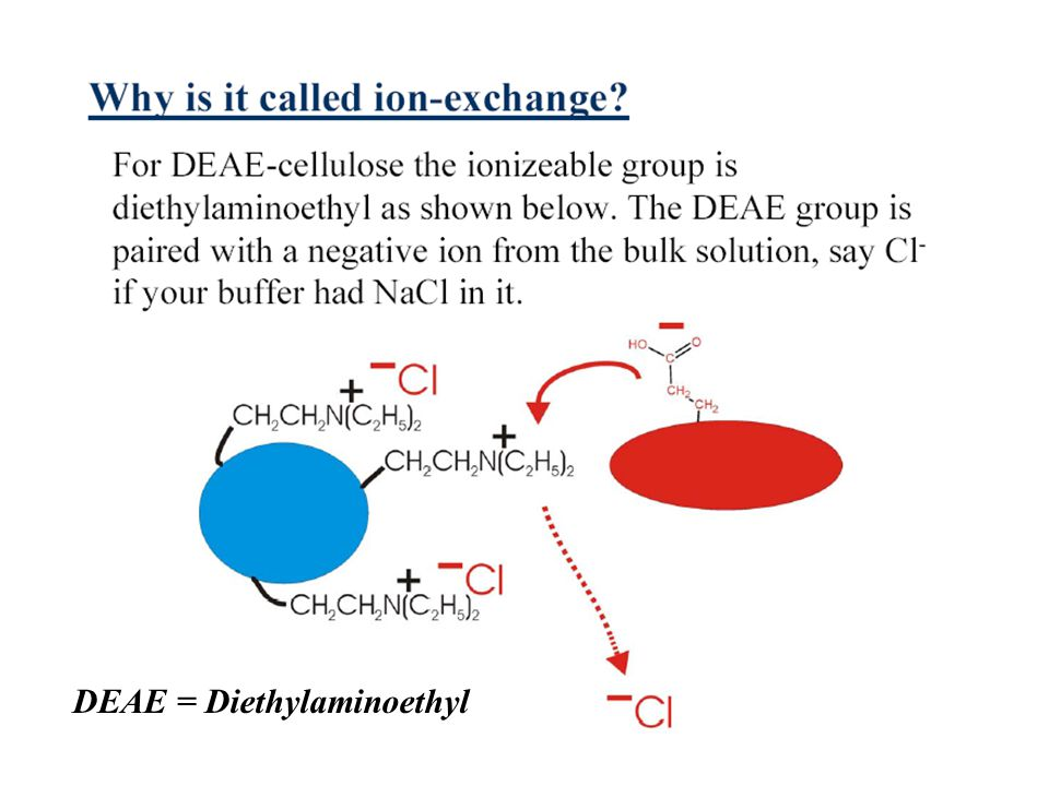 DEAE = Diethylaminoethyl