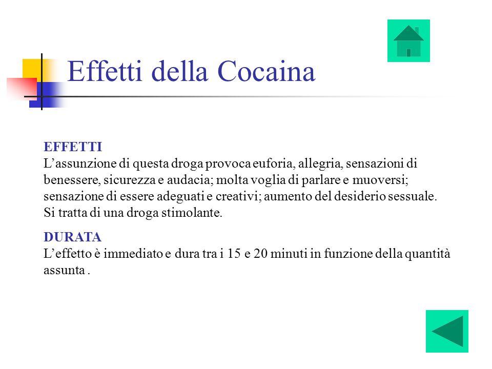 Effetti della Cocaina EFFETTI