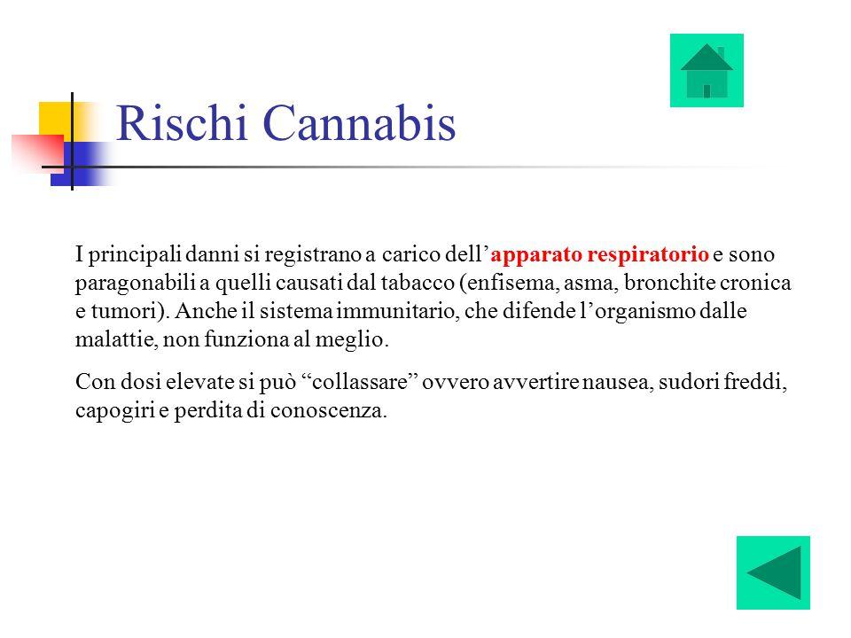 Rischi Cannabis