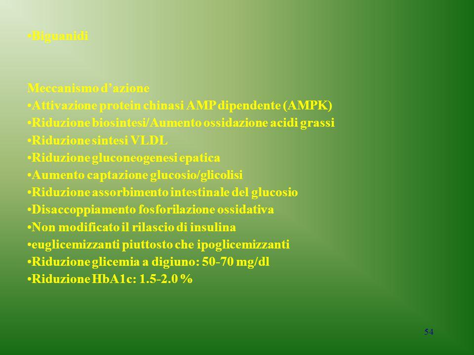 Biguanidi Meccanismo d'azione. Attivazione protein chinasi AMP dipendente (AMPK) Riduzione biosintesi/Aumento ossidazione acidi grassi.