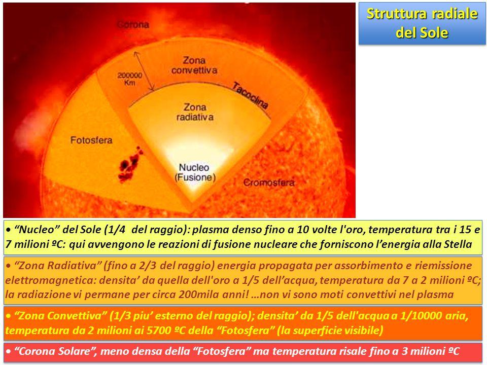 Struttura radiale del Sole