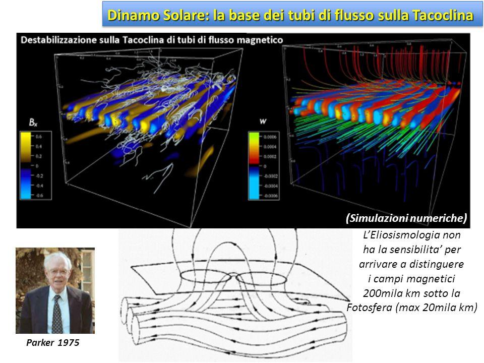 Dinamo Solare: la base dei tubi di flusso sulla Tacoclina