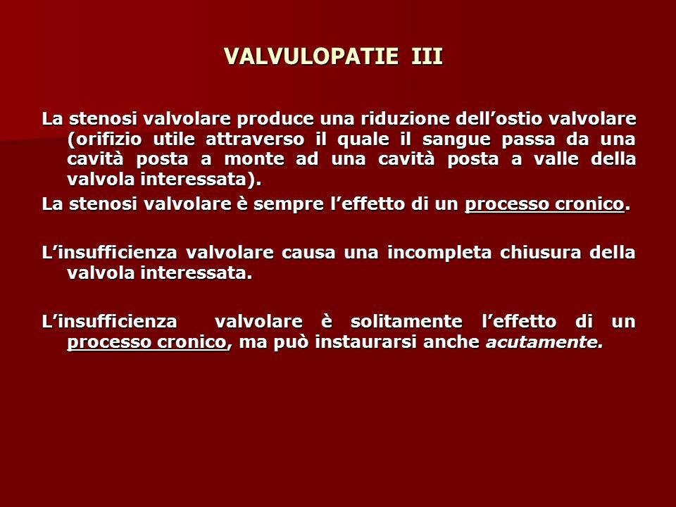 VALVULOPATIE III