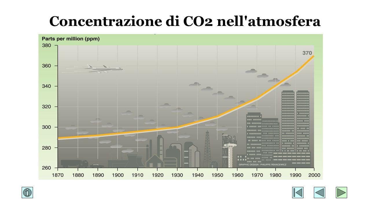 Concentrazione di CO2 nell atmosfera