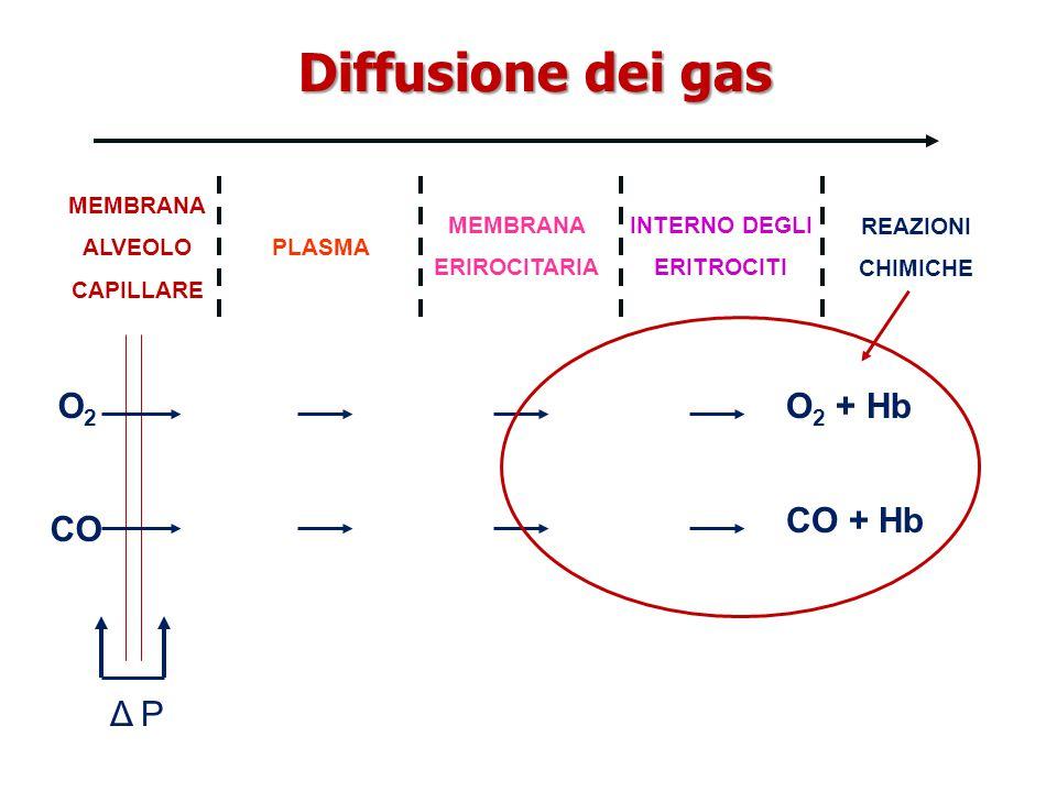 Diffusione dei gas O2 O2 + Hb CO + Hb CO Δ P MEMBRANA ALVEOLO