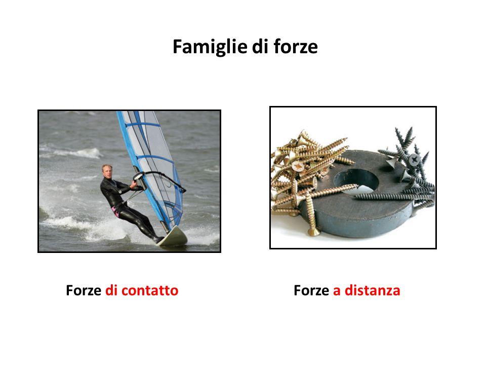 Famiglie di forze Forze di contatto Forze a distanza