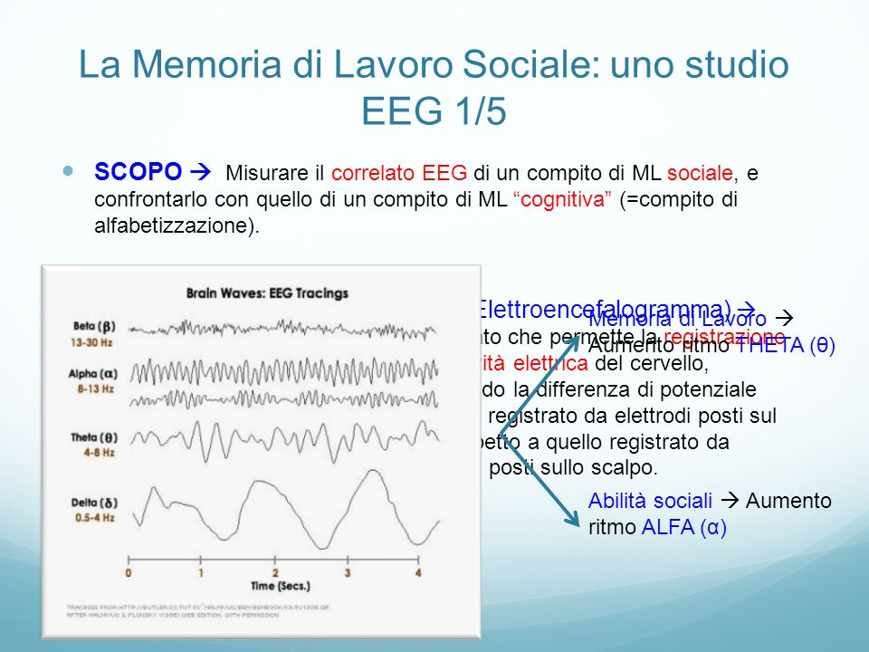 La Memoria di Lavoro Sociale: uno studio EEG 1/5