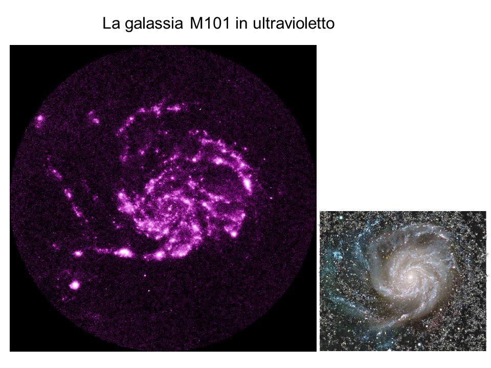 La galassia M101 in ultravioletto