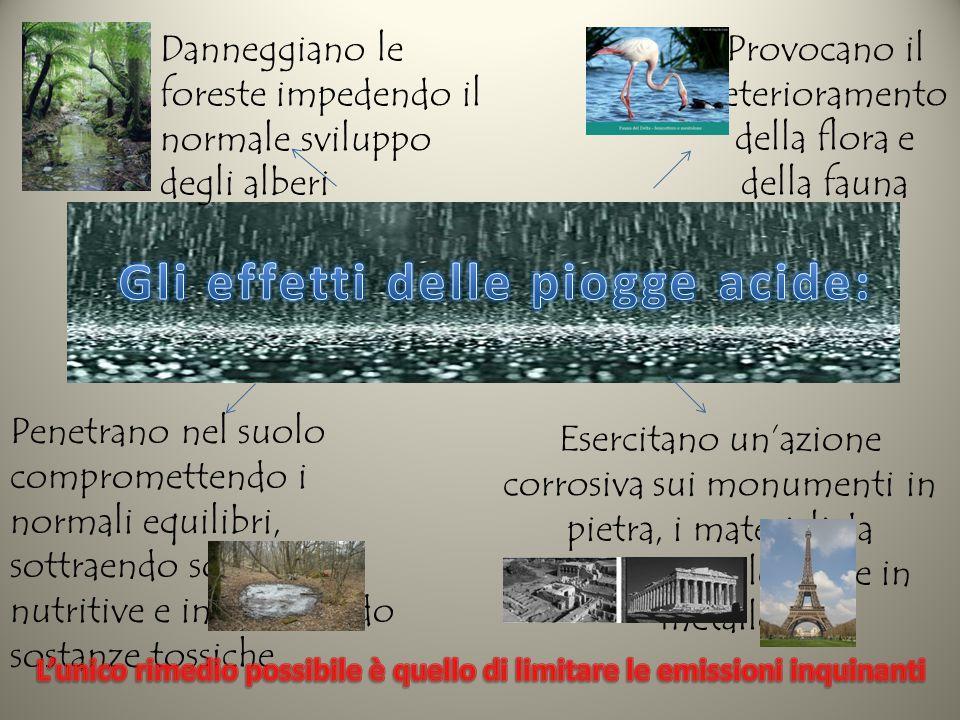 Gli effetti delle piogge acide: