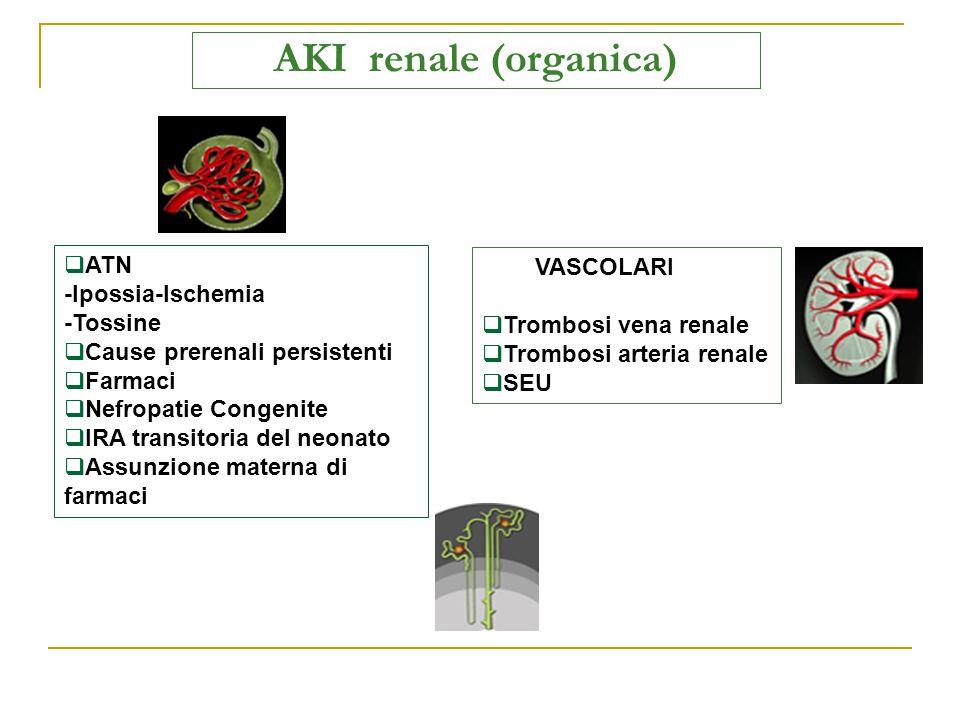 AKI renale (organica) ATN VASCOLARI -Ipossia-Ischemia -Tossine