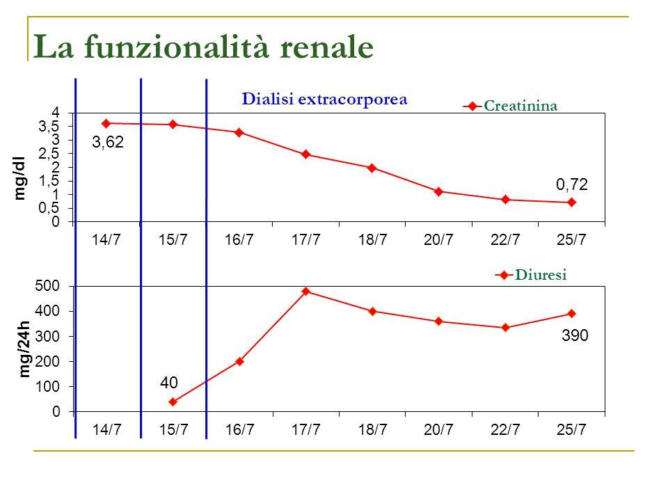 La funzionalità renale