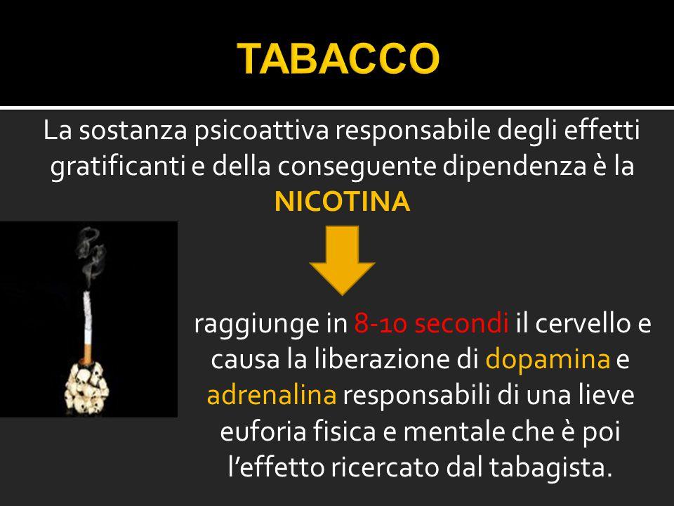 TABACCO La sostanza psicoattiva responsabile degli effetti gratificanti e della conseguente dipendenza è la NICOTINA.