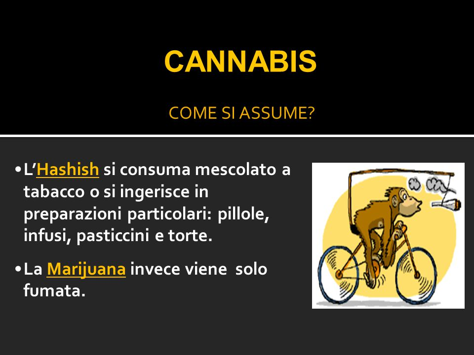 CANNABIS COME SI ASSUME