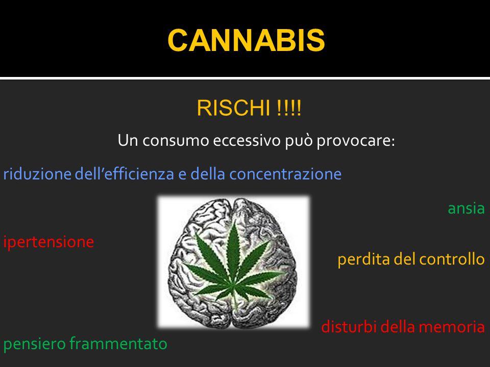 CANNABIS Rischi !!!!