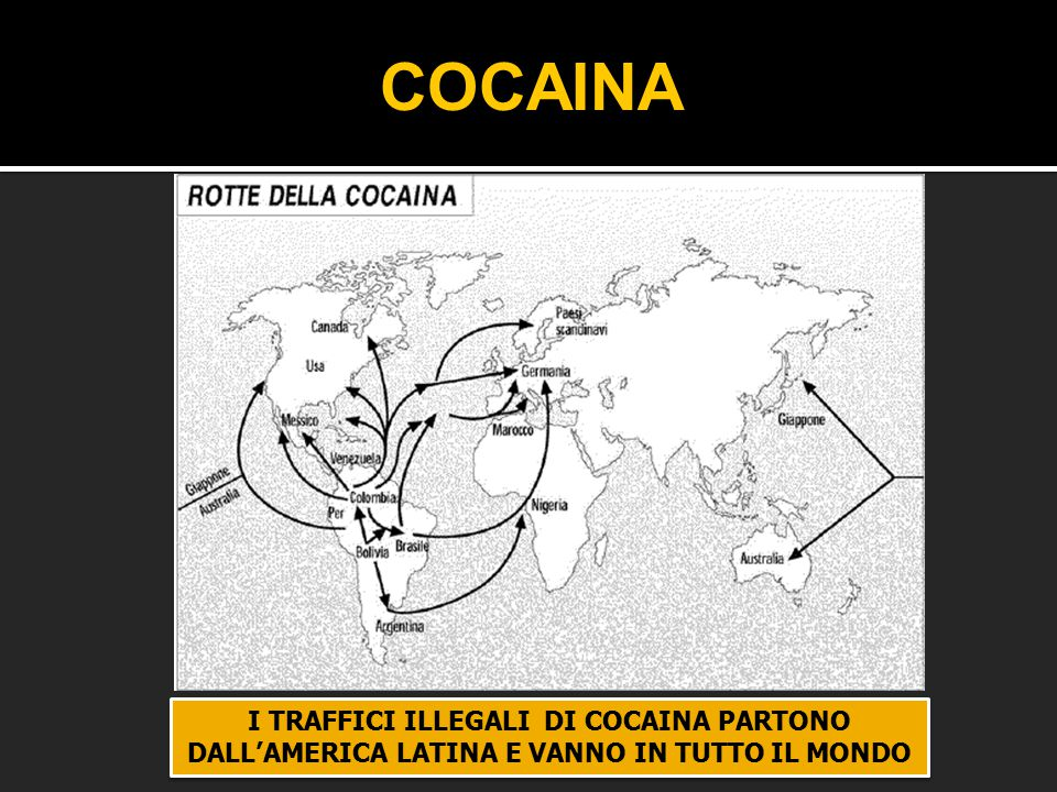 COCAINA I TRAFFICI ILLEGALI DI COCAINA PARTONO DALL'AMERICA LATINA E VANNO IN TUTTO IL MONDO