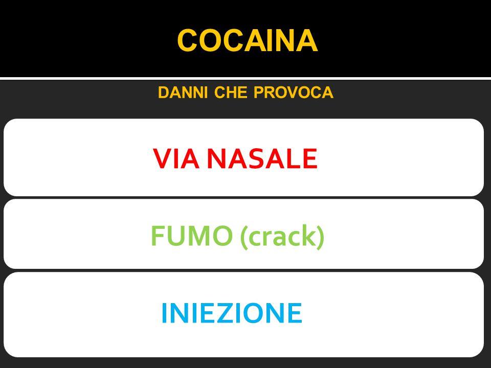 COCAINA VIA NASALE FUMO (crack) INIEZIONE DANNI CHE PROVOCA