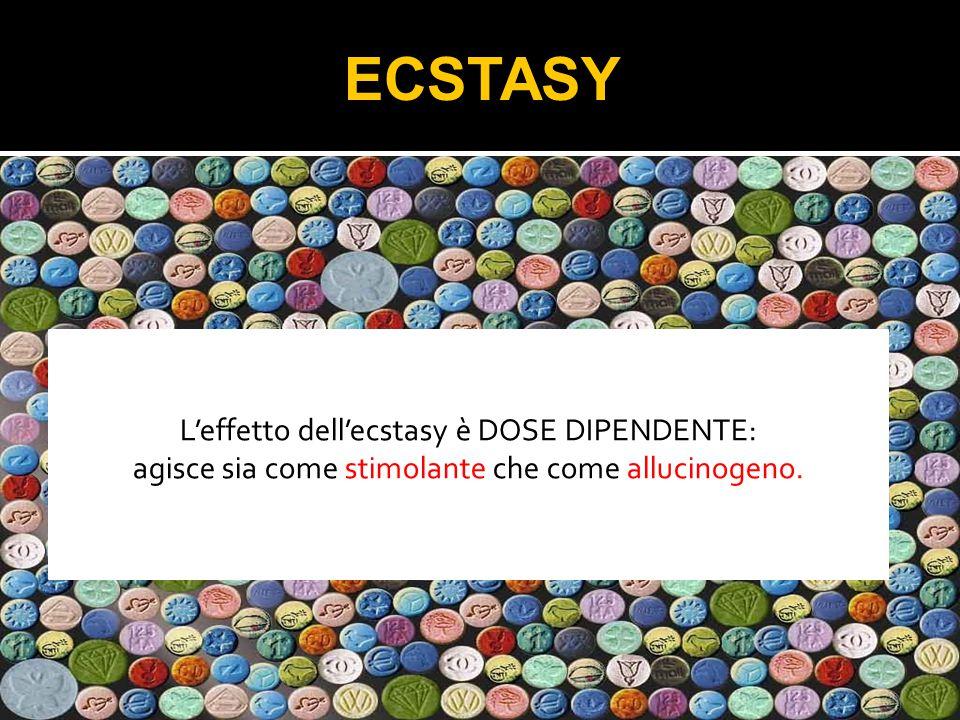 ECSTASY L'effetto dell'ecstasy è DOSE DIPENDENTE: