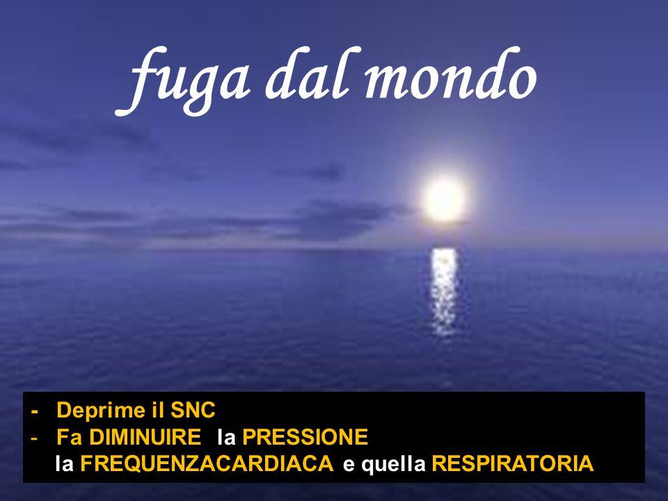 fuga dal mondo EROINA EFFETTO RICERCATO - Deprime il SNC