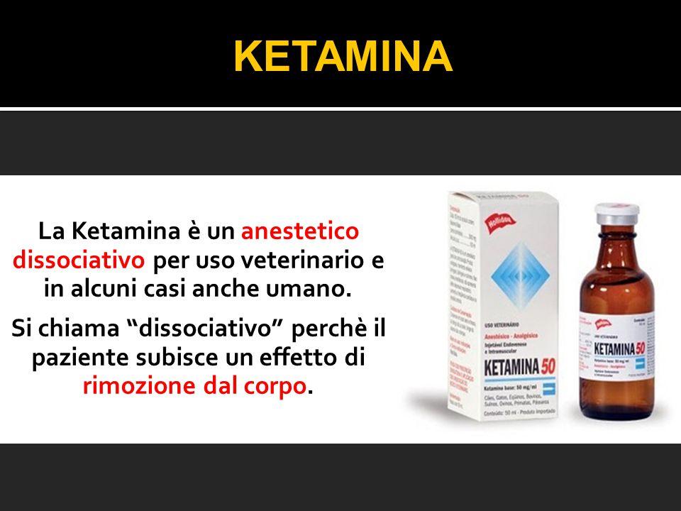KETAMINA La Ketamina è un anestetico dissociativo per uso veterinario e in alcuni casi anche umano.